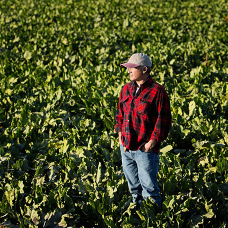 Farmer in plaid and a cap standing in a crop field